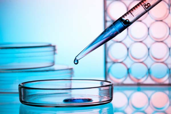 Fivet fecondazione in vitro veneto